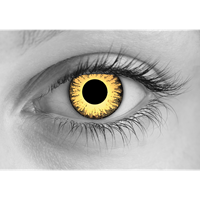 Zombie Undead Yellow contact lens