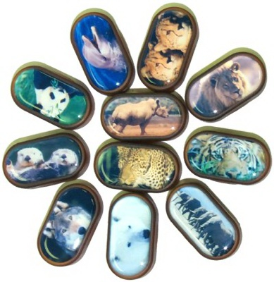Buy Endangered Species Lens Cases, Contact Lens Accessory online.