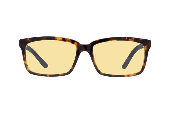 Gunnar Haus Computer Glasses Tortoise ComputerVisionAides