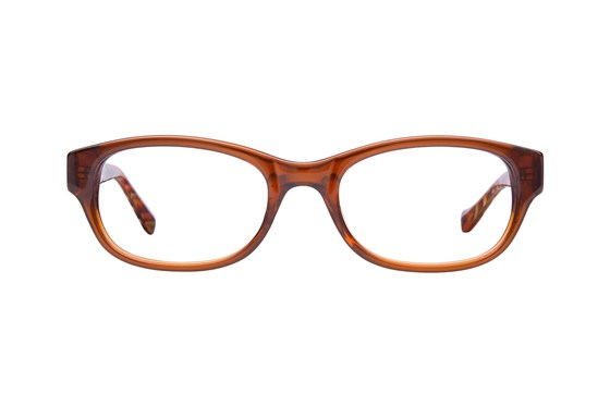 Lucky Busy Bee Brown Eyeglasses
