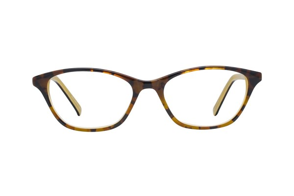 Eco New York Brown Eyeglasses