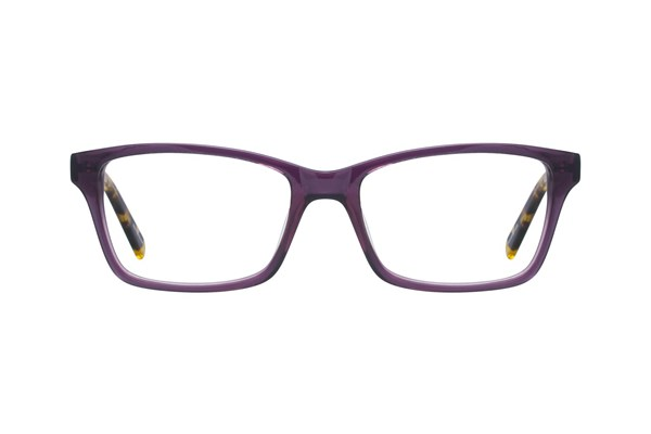 Eco Rome Purple Eyeglasses