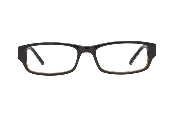 Jill Stuart JS 294 Brown Eyeglasses