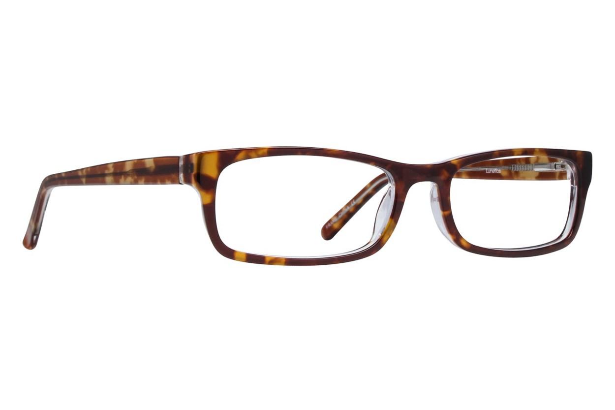 Lunettos Abraham Tortoise Eyeglasses