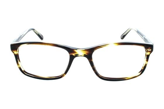 Original Penguin The Carmichael Tortoise Eyeglasses