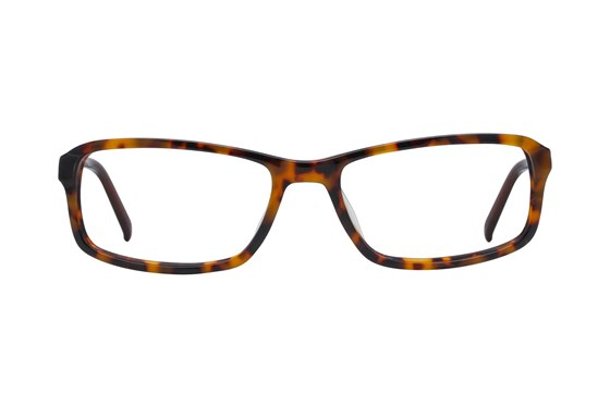 Fatheadz Balance Tortoise Eyeglasses