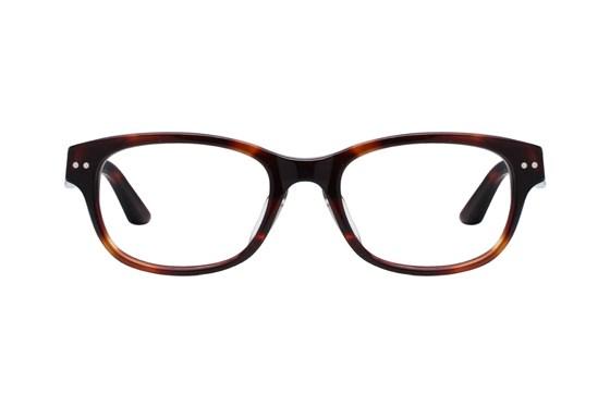 TC Charton Darcy Brown Eyeglasses