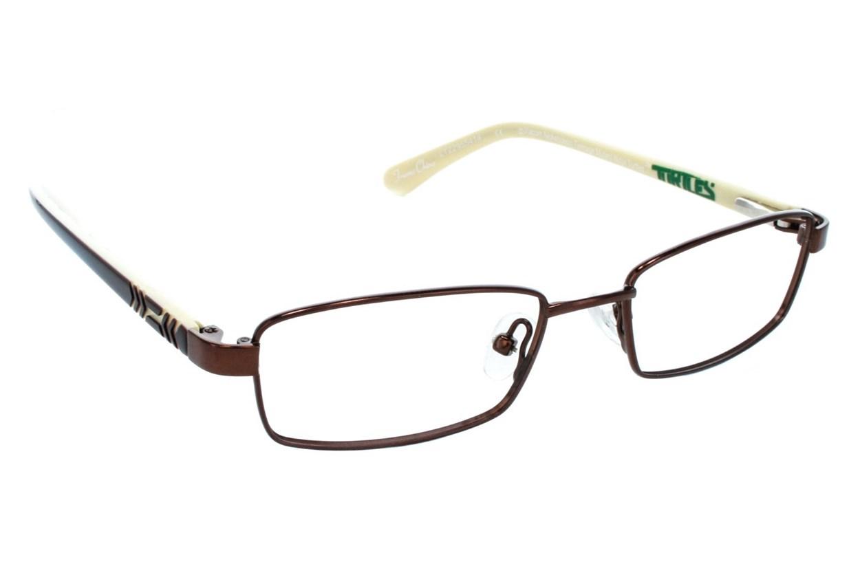 Nickelodeon Teenage Mutant Ninja Turtles Ninjutsu Brown Eyeglasses