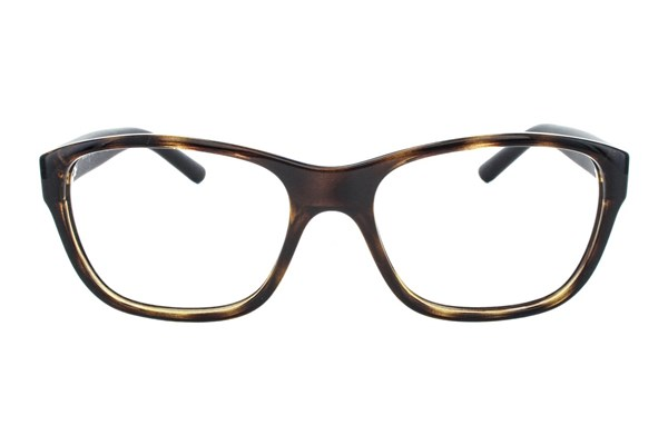 Polo PH2116 Eyeglasses - Tortoise