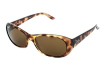 Ray-Ban RB4061 Polarized