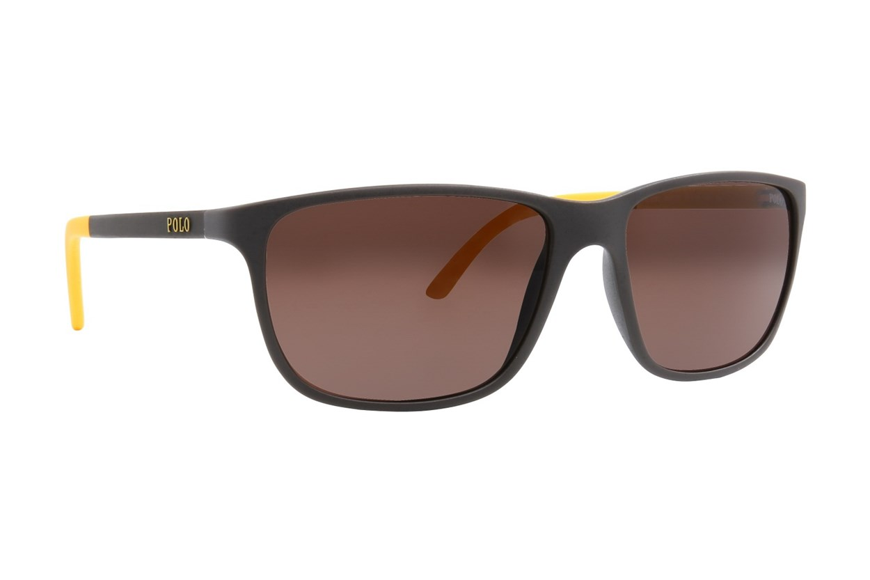 Polo PH4092 Sunglasses - Brown