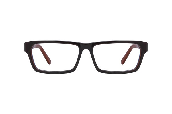 Cantera Draft Eyeglasses - Brown