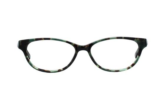 Ted Baker B711 Green Eyeglasses