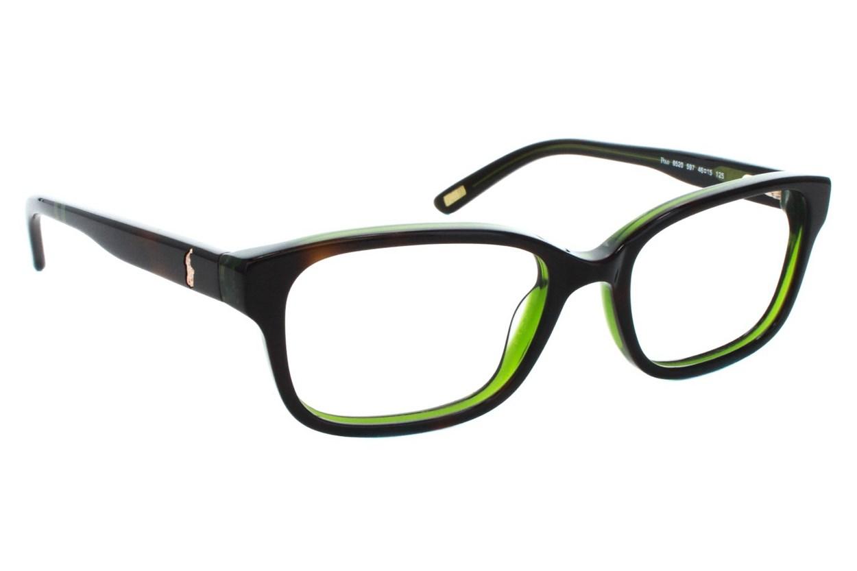 Polo Prep PP8520 Tortoise Eyeglasses