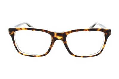Ray-Ban® Youth RY 1536 Tortoise