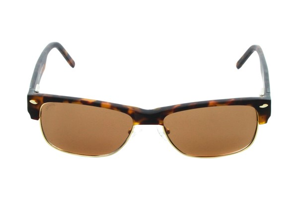 Lennon 3003S Polarized Sunglasses - Tortoise