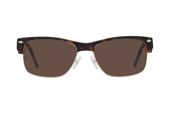 Lennon 3003S Polarized Tortoise Sunglasses