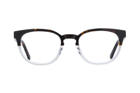 Lunettos Michael Tortoise Eyeglasses