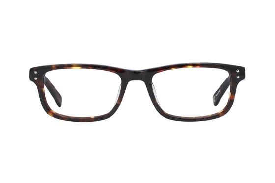 Pepe Jeans Kids PJ4020 Tortoise Eyeglasses