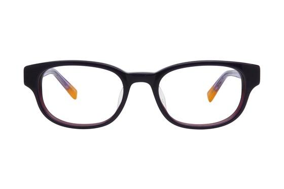 Converse Q005 Purple Eyeglasses