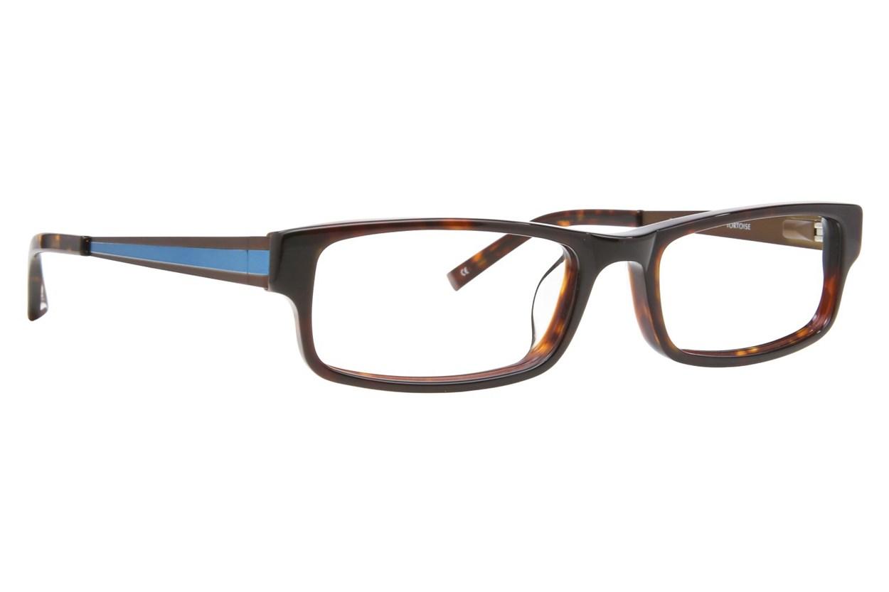 Converse Q018 Tortoise Eyeglasses