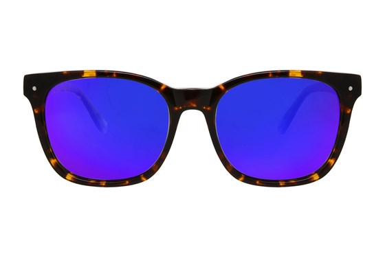 Proof Scout Eco Tortoise Sunglasses