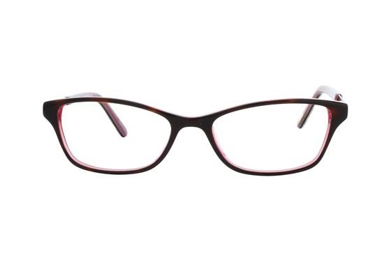 Ted Baker B714 Tortoise Eyeglasses
