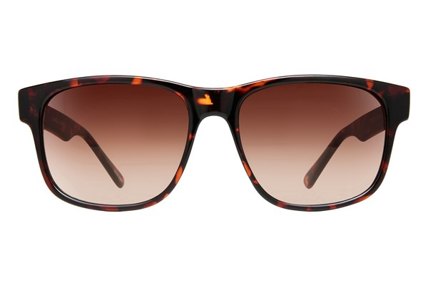 Lunettos London Tortoise Sunglasses