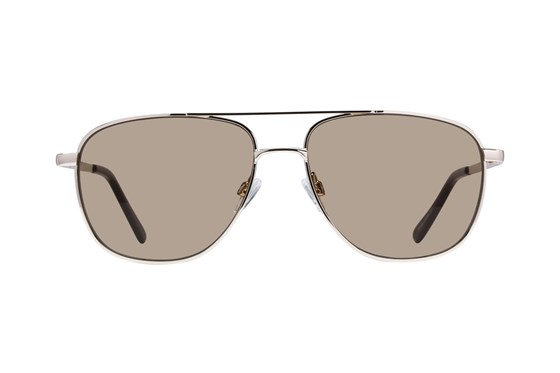 Lunettos Stanley Gold Sunglasses