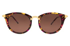 Wildfox Sunset Tortoise