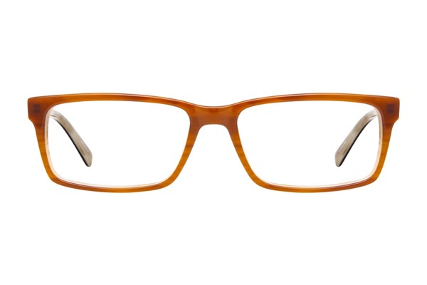 Viva 309 Brown Eyeglasses
