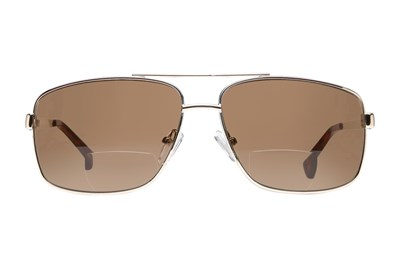 Cafe Readers 935 Bifocal Reading Sunglasses Gold