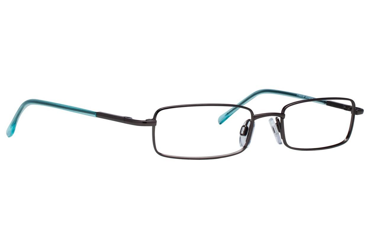 Arlington AR1009 Gray Eyeglasses