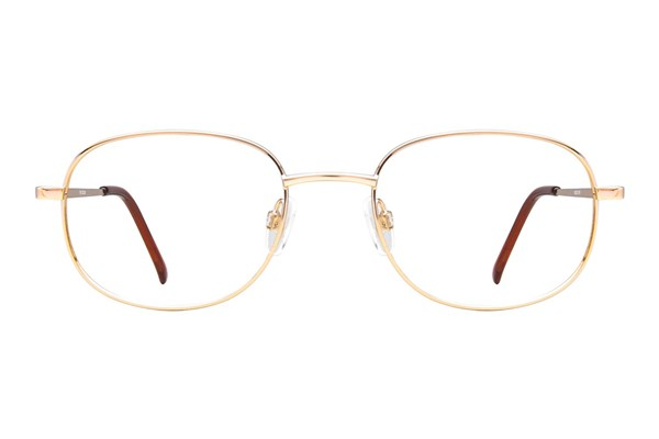 Arlington AR1011 Eyeglasses - Gold