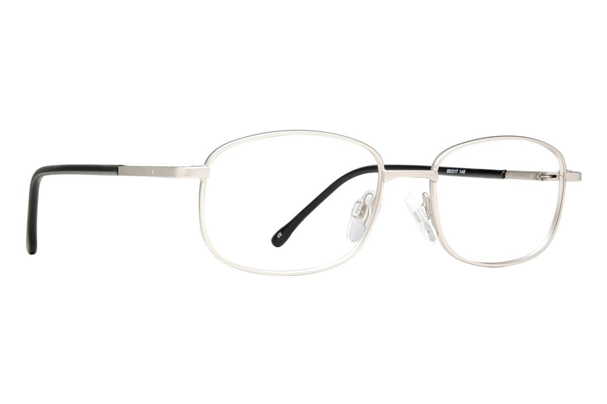 Arlington AR1023 Silver Eyeglasses