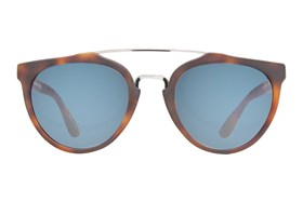 Revo Buzz - VOV Bono Collection Tortoise