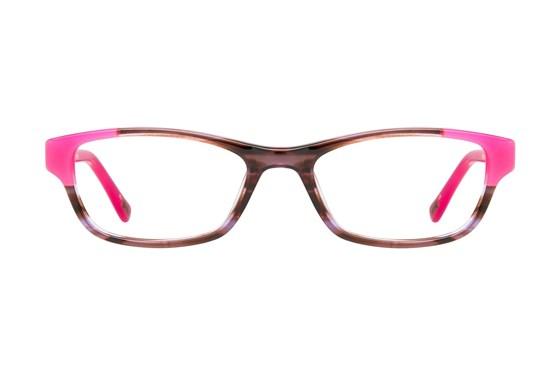 Ted Baker B937 Brown Eyeglasses