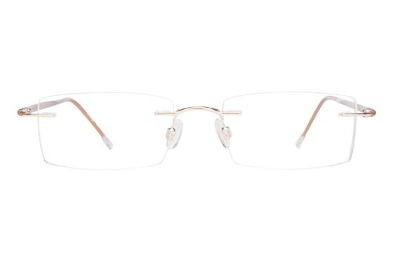 Invincilites Sigma T Brown Eyeglasses