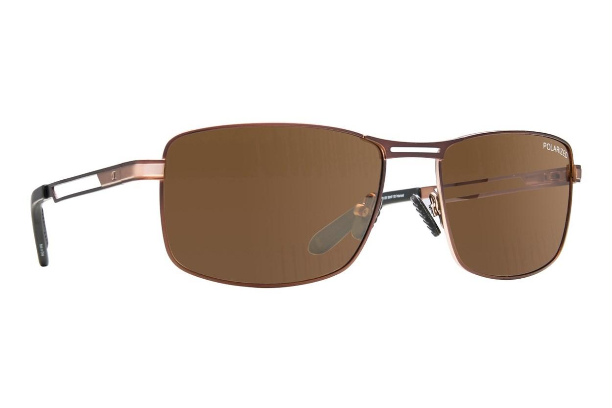 Champion 6029 Brown Sunglasses