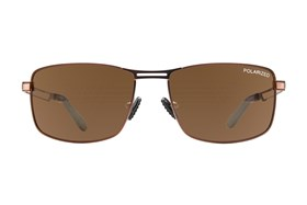 Champion 6029 Brown