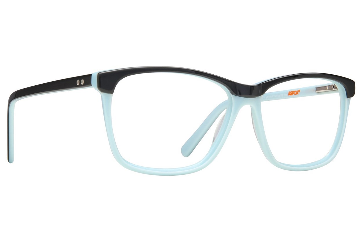 Paws n Claws B 907 Black Eyeglasses