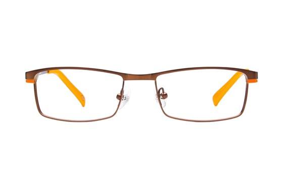 Harley Davidson HDT 118 Brown Eyeglasses