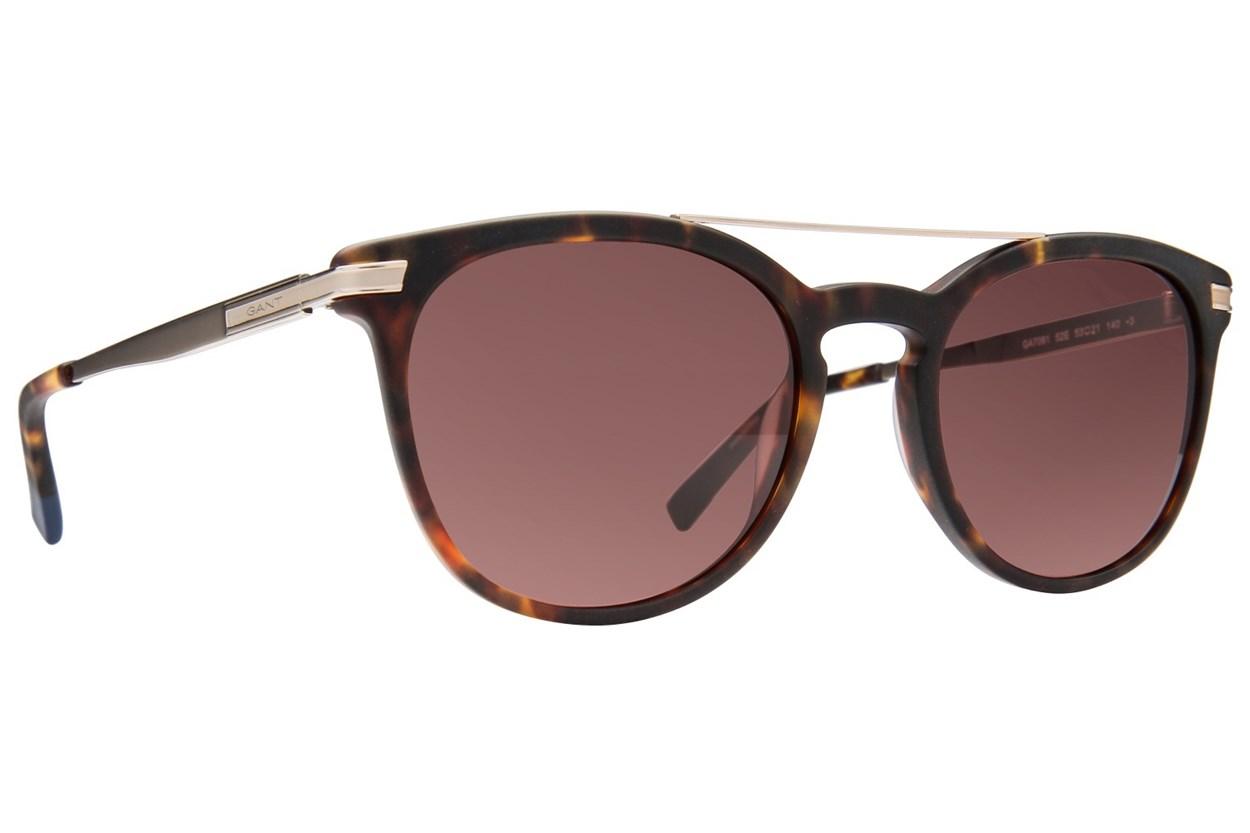 Gant GA7061 Tortoise Sunglasses