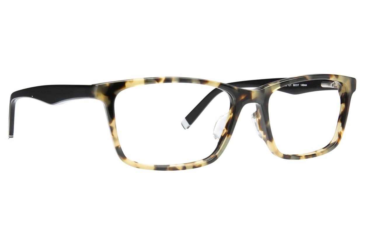 TC-Fit Istanbul Tortoise Eyeglasses
