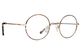 Colors In Optics Edison Tortoise
