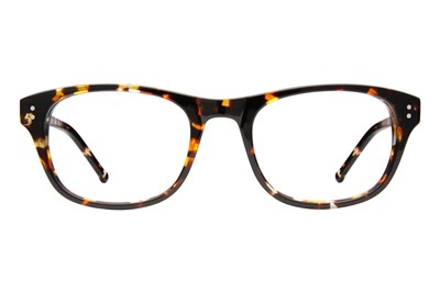 Colors In Optics Duke Tortoise