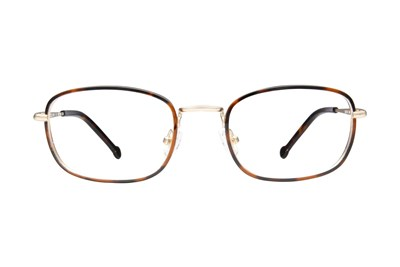 Colors In Optics Greyson Tortoise