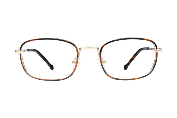 Colors In Optics Greyson Tortoise Eyeglasses