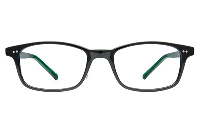 Colors In Optics Bedford Black