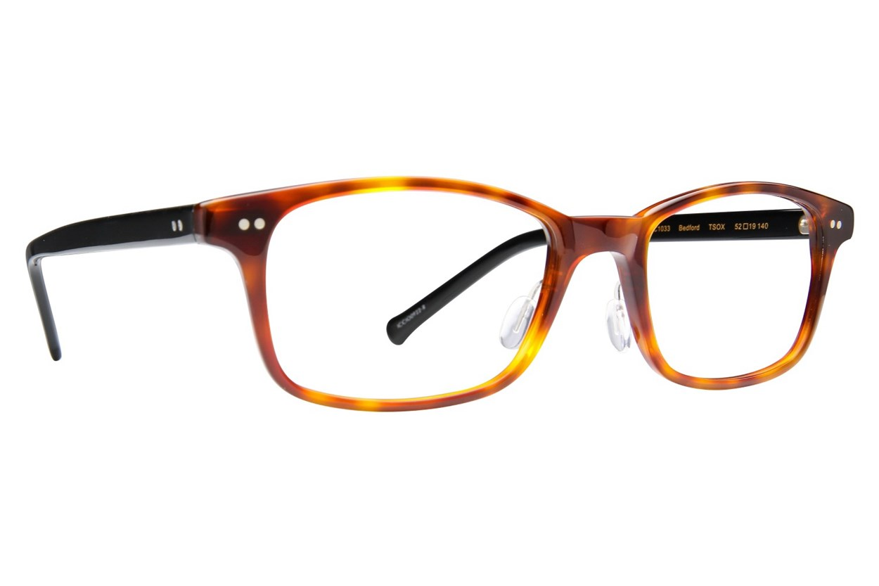 Colors In Optics Bedford Tortoise Eyeglasses
